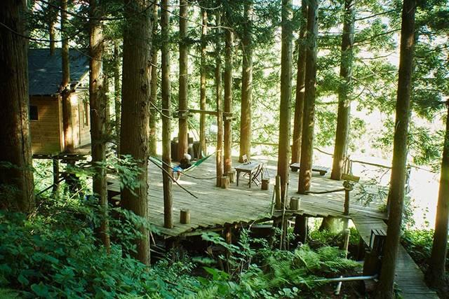 DIYによって生み出されたキャンプが楽しめるツリーハウス