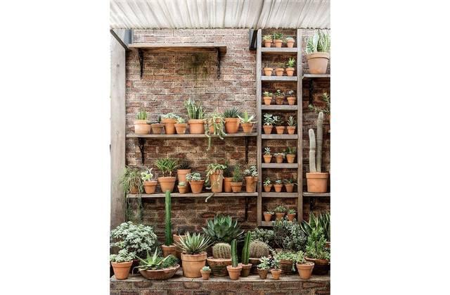 グリーン&観葉植物をプランターでもっとおしゃれに楽しむアイデア!