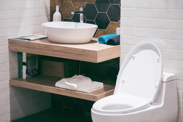 快適さ、段違いです。便器だけじゃない華麗なるトイレの脇役たち