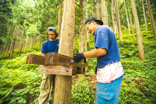 大人の秘密基地をDIY!森の中で楽しむツリーキャンプ