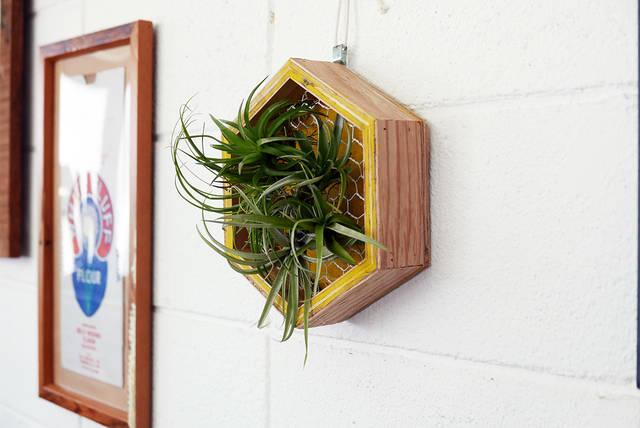 ハニカムデザインで洒落度アップ!壁掛けプランターの作り方!