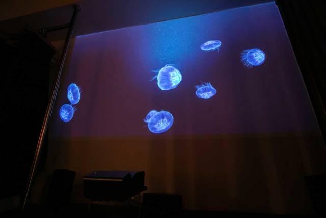 パーテーションで目を惹くデザインに!ラグジュアリーさを意識したリノベルーム