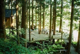 DIYによって生み出されたキャンプが楽しめるツリーハウス | DIYer(s)