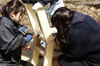 【デザイン募集!】あなたのアイデアが形になる!人と人を繋げるツリーハウスプロジェクト | DIYer(s)│リノベと暮らしとDIY。