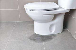 突然起きるトイレの水漏れ!修理までの応急処置法をご紹介! | DIYer(s)│リノベと暮らしとDIY。