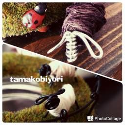 tamakobiyori